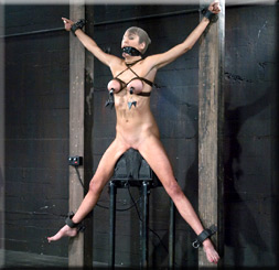 Device Bondage - Gallery #1